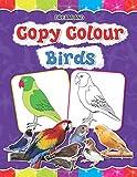 Copy Colour: Birds (Copy Colour Books)