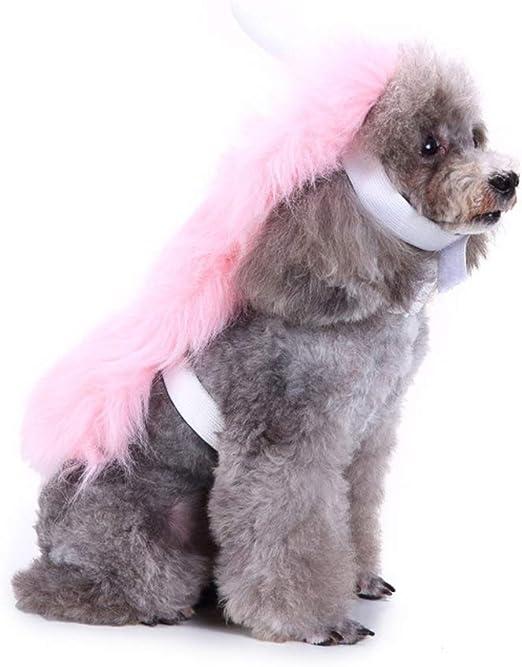 Danny Queen Disfraz para Mascotas de Halloween, Vestido para ...