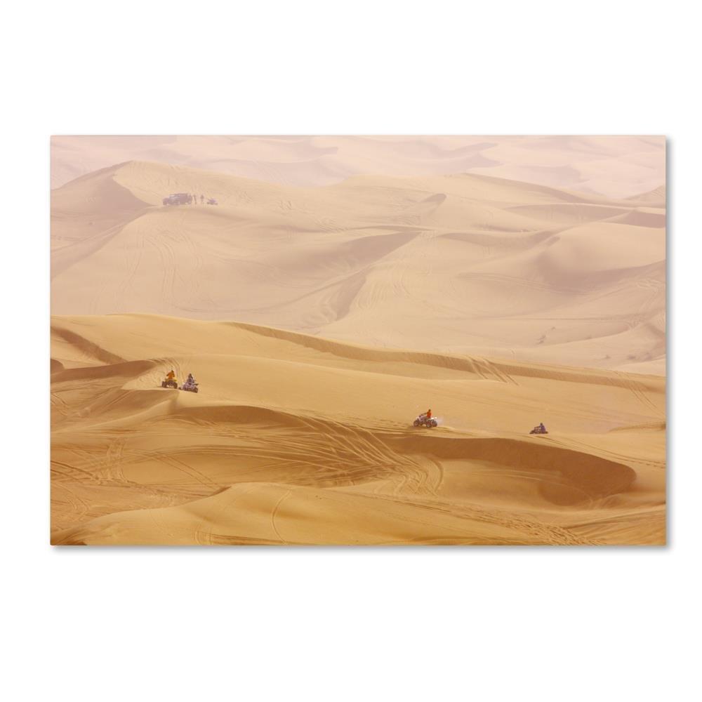 砂漠2 byロバートハーディング画像ライブラリ、22 x 81 cmキャンバス壁アート B0762R5Z6L
