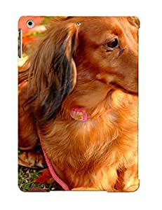 Quality Standinmyside Case Cover With Animal Dachshund Dog Nice Appearance Compatible With Ipad Air()