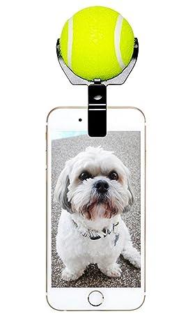 Dog Selfie Stick Clip con bola, waterluu mascota perro gato selfie soporte, ATENCIÓN corrección: Amazon.es: Productos para mascotas