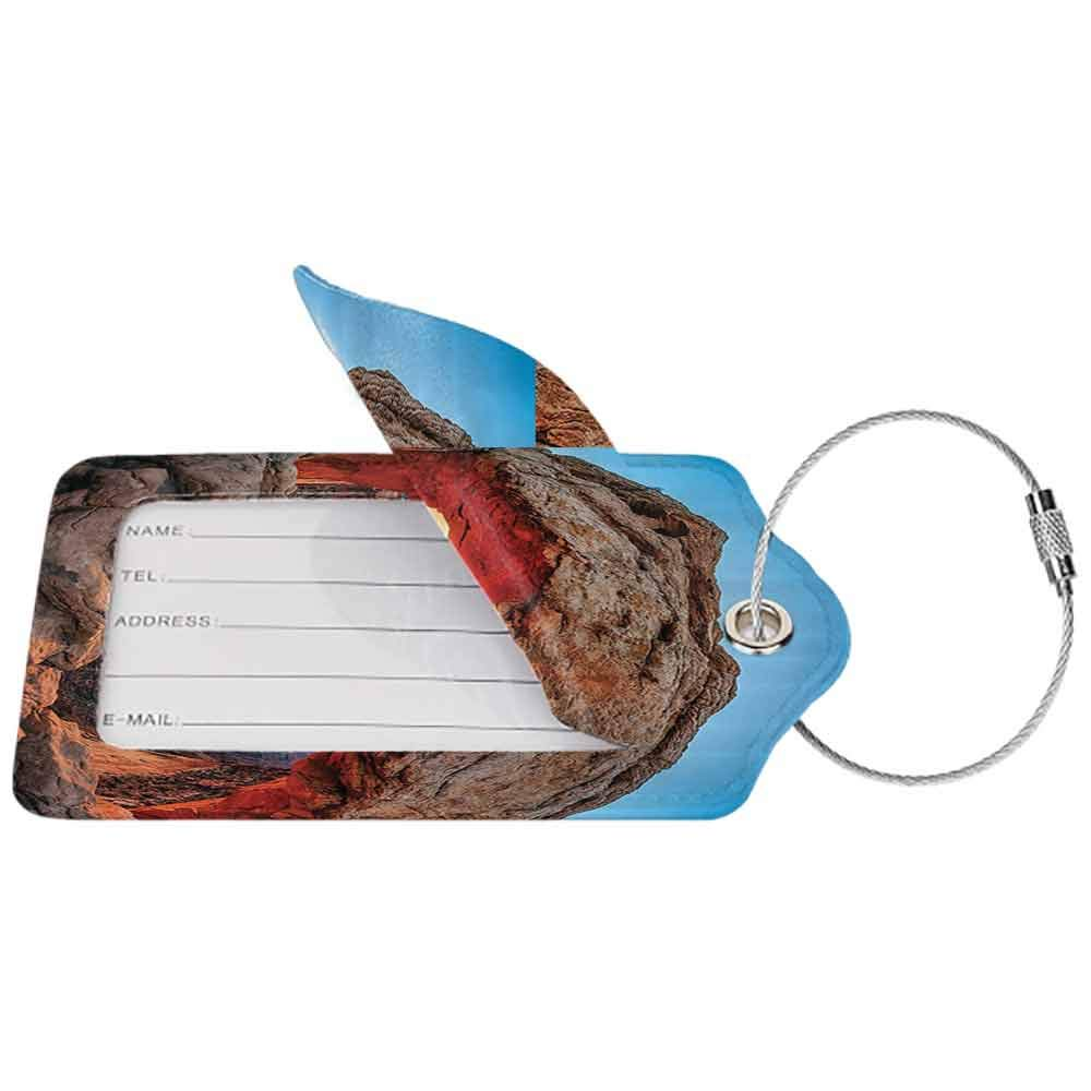 Flexible luggage tag Room Decorations Famous Sunrise At Mesa Arch In Canyonlands National Park Fashion match Utah W2.7 x L4.6