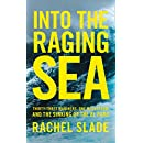 Into the Raging Sea: Thirty-three mariners, one megastorm and the sinking of the El Faro