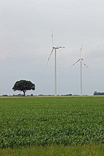 Home Comforts Peel-n-Stick Poster of Pinwheel Wind Power Energy Wind Energy Wind TurbinePoster 24x16 Adhesive Sticker Poster Print