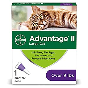 Bayer Advantage II Flea Prevention for Large Cats, Over 9 lbs 4