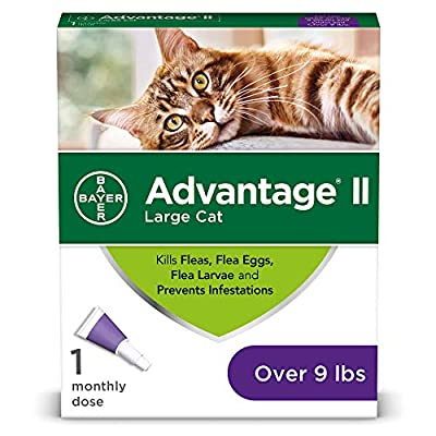 Cat Health Products Bayer Advantage II Flea Prevention... [tag]