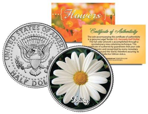 DAISY FLOWER JFK Kennedy Half Dollar US Colorized Coin