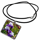 3dRose Danita Delimont - Gardens - USA, Oregon, Keizer, Schreiners Iris Garden - US38 RBR0718 - Rick A Brown - Necklace With Rectangle Pendant (ncl_146207_1) offers