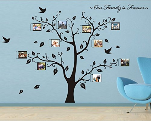 Rainbow Fox Photo frame tree wall stickers Removable Wall Decor Decal  Stickers for livingroom gallery family office study rooms d corPhoto Wall Frames for Living Room  Amazon com. Frames For Living Room. Home Design Ideas