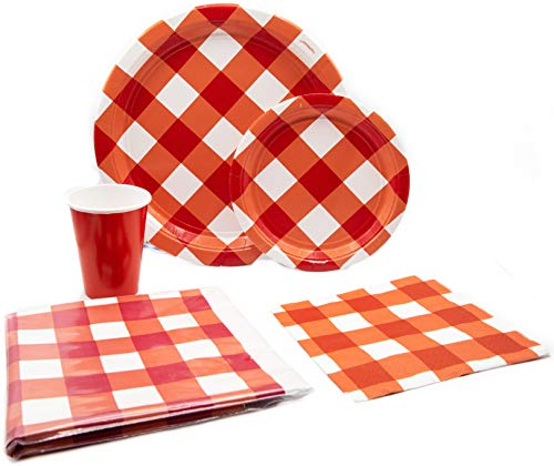 American Summer Red Gingham Picnic Pack! Disposable Paper Plates, Napkins and Cups Set for 15 (With free extras)