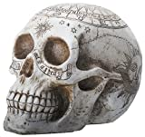 7.75 Inch Resin Skull with Astrology Engravings, White Colored