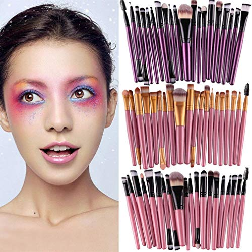 DICPOLIA Beauty 20 Pcs Makeup Brush Set Professional Face Eye Shadow Eyeliner Foundation Blush Lip Makeup Brushes Powder Liquid Cream Cosmetics Blending Brush Tool (H)