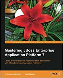 Mastering Enterprise JavaBeans and the Java 2 platform, Enterprise edition