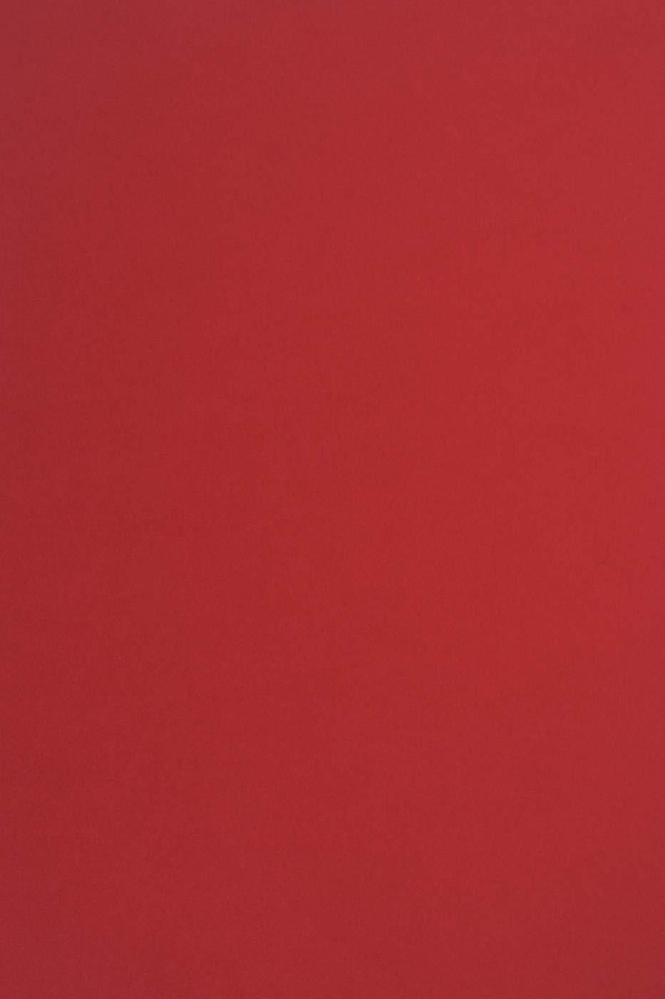 Einladungen Visitenkarten ideal f/ür Hochzeit 25 Blatt Violett Tonkarton DIN A4 210x297 mm Sirio Color Vino 210g Basteln und Dekorieren Diplome Geburtstag Scrapbooking Weihnachten
