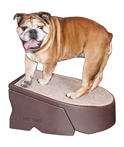 Easy Step 1 - Pet Gear Stramp Stair and Ramp Combination, Dog/Cat Easy Step, Lightweight/Portable, Sturdy