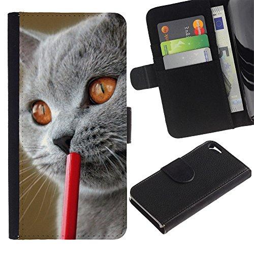 LASTONE PHONE CASE / Luxe Cuir Portefeuille Housse Fente pour Carte Coque Flip Étui de Protection pour Apple Iphone 5 / 5S / Blue British Shorthair Siberian Cat