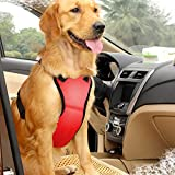 East-Bird Dog Safety Vest Harness with Safety Belt for Most Car, Travel Strap Vest with Car Seat Belt Lead Adjustable Lightweight and Comfortable Red L