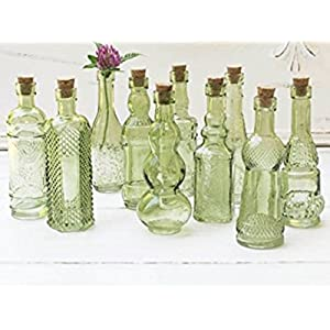 51WcxnA4O0L._SS300_ 50+ Best Glass Bottles With Cork Toppers
