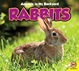Rabbits, Pamela McDowell, 1619132699