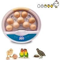 Mini incubadora de Huevos Máquina incubadora de Aves de Corral automática Totalmente Digital con Control de Temperatura…