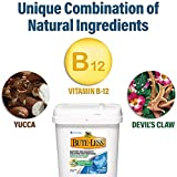 Bute-Less Comfort & Recovery Supplement