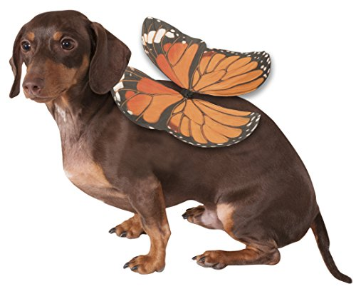 Rubie's Monarch Butterfly Wing Dog Costume from Rubie's