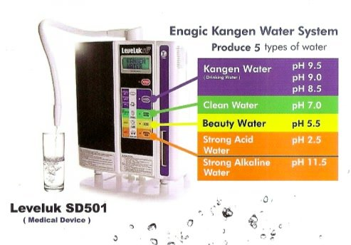 Kangen Leveluk Sd501 Water Ionizer Buy Online In Uae