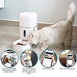 CrazyFire 6L Automatic Cat Feeder,Automatic Dog