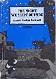The Night We Slept Outside (Ready-To-Read)