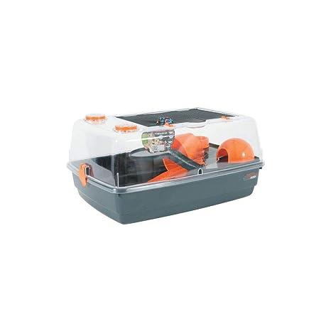 Zolux Indoor 55 Vision 360 Jaula para hámster, Color Naranja ...