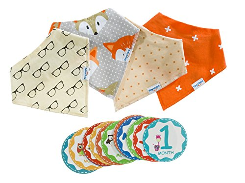 Baby Bandana Drool Bib Kit by Tiny Stars - 4 Pack of Girl Absorbent Cotton/Fleece Snap-On Bibs with 12 Baby Monthly Stickers. Great for Infant Boys and Girls – Great Baby (Eden Terry)