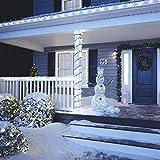 NOMA LED Net Christmas Lights   100-Count Mini