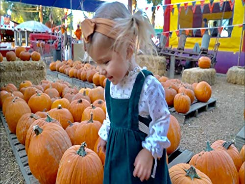 Worlds Largest Pumpkin -