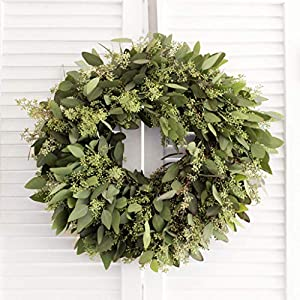 "Fresh Seeded Eucalyptus Wreath -20"" (Free Shipping). Home Decor 
