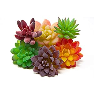 Oasis Cresta | Set of 6 Pieces Artificial Succulent Plants | Faux Plastic Succulent - Unpotted | Fake Cactus Plants for Indoor & Outdoor Home Decor, Wreaths, Bouquets, and Centerpieces 82