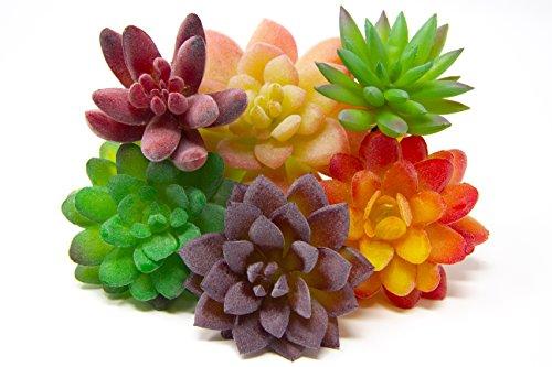 Oasis Cresta | Set of 6 Pieces Artificial Succulent Plants | Faux Plastic Succulent - Unpotted | Fake Cactus Plants for Indoor & Outdoor Home Decor, Wreaths, Bouquets, and Centerpieces