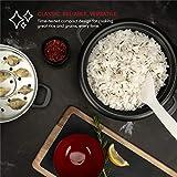 Aroma Housewares ARC-743-1NGR 6-Cup