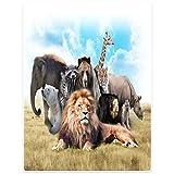 Blankets Sofa Bed Throw Blanket Funny Africa Animals Lion Elephant Giraffe Rhinoceros 40''x50''