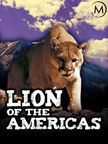 Lion of the Americas