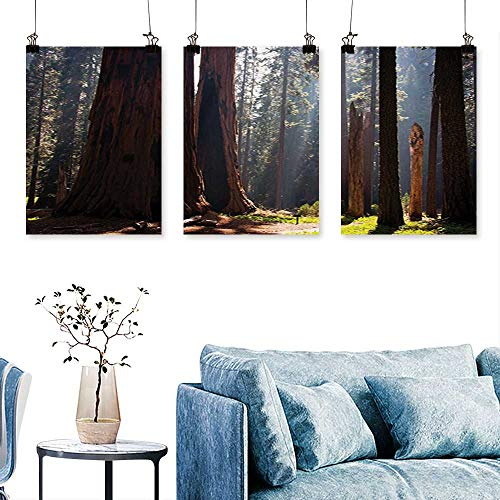 (SCOCICI1588 3-Piece Modern Northeast Greenland Surreal Public Serene Place Retreat for Wall Decor Home Decoration No Frame 24 INCH X 40 INCH X 3PCS)