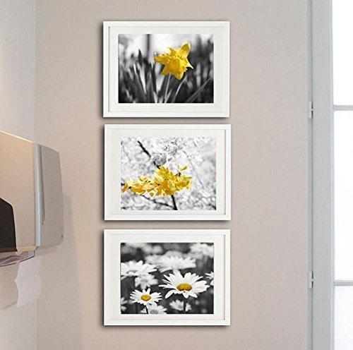 Bathroom Decor, Modern Bathroom Art, Grey and Yellow Photographic Print set of 3 Photos 8x10, 11x14, 5x7, Cottage Bathroom Set, Laundry Room Decor - 20% off discount