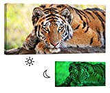 Glow in the Dark Canvas Painting - Stretched and Framed Giclee Wall Art Print - Lion Tiger Leopard Young Tiger - Master Bedroom Living Room Decor - 46 x 24 inch