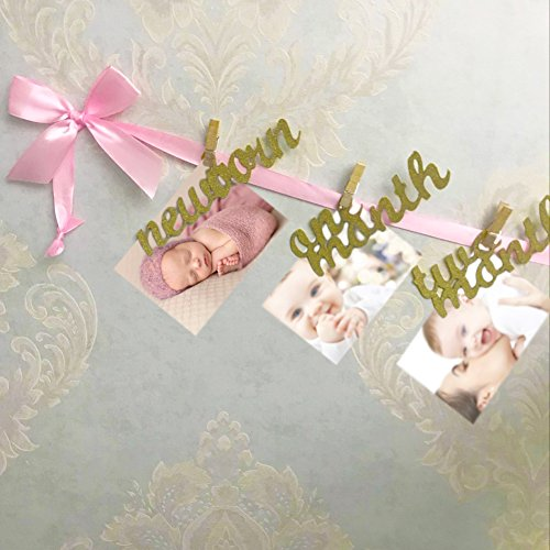 Newborn to 12 Months Photo Banner, Baby Growth Record Garland, Great for First Birthday Party Decoration (Pink and Gold) (Pink Photo Great)