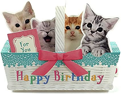 Amazon.com: Kitties en canasta Feliz cumpleaños Pop Up ...