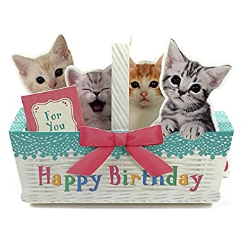 Amazon Kitties In Basket Happy Birthday Pop Up Melody Card