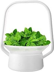 Hydroponics Growing System,Support Indoor Grow,herb Garden kit Indoor, Grow Smart for Plant, Built Your Indoor Garden