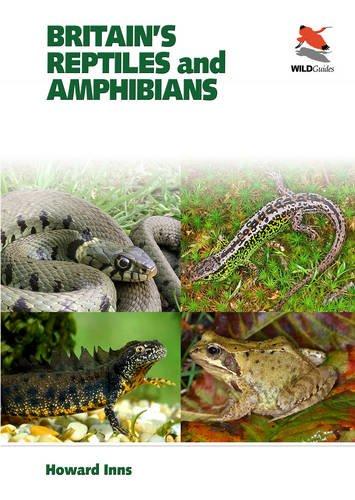Britain's Reptiles and Amphibians (Britain's Wildlife)