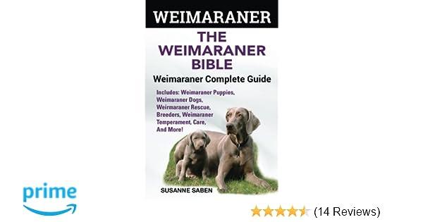 Weimaraner The Weimaranar Bible Weimaraner Complete Guide