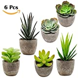 Supla 6 Pcs Assorted Potted Succulents Plants Decorative Artificial Succulent Plants Potted Faux Cactus Aloe with Gray Pots Artificial Topiary Plant Potted