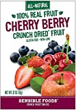 Sensible Foods Fruit Snacks, Cherry Berry, 48 Count (Pack of 48)